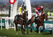 Grand National hero Tiger Roll set for Cheltenham comeback in Glenfarclas Cross Country Chase