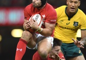 Rugby urged to make protective headgear mandatory