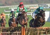 Horse Racing, Cheltenham Racecourse, Cheltenham, UK - 17 Nov 2018