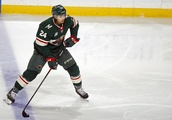 Minnesota Wild: Off to another hot start with 2 goals in 8 minutes