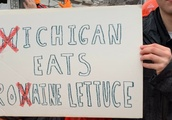 11 Funniest Signs From College Gameday at Ohio State