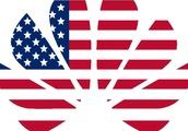 US versus Huawei part two: getting allies in line