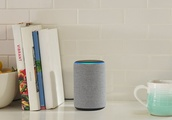 Smart speakers are everywhere this holiday season, but they're really a gift for big tech companies