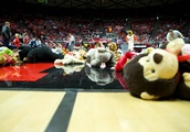 The Top 5 Stuffed Animals You Should Throw On the Court At This Saturday's Basketball Game