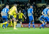 Graft and Scott Fraser's clinical touch paves way for Burton Albion's victory over Shrewsbury Town