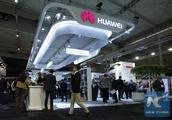 US senator's proposal affecting Huawei 'dangerous'