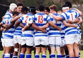 Independent panel appointed to investigate Auckland first XV rugby dispute