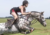 Top South Island horse riders coming to South Canterbury