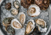 Tomales Bay Oysters Drop From Menus Following Health Scare