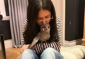 Salma Hayek adopts adorable pet owl