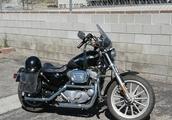 Harley Davidson XL883 Anniversary I 2003 I Canyon Country CA