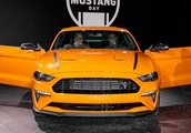 Ford Explains Why It Chose Mustang High Performance Pack Name Over SVO