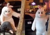 Video shows Easter Bunny punching man on sidewalk