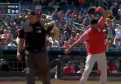 Nationals manager Dave Martinez threw a furious tantrum after his ejection