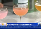 Celebrate National Martini Day In Chicago