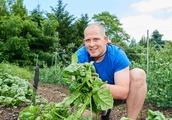 Top Hamptons chefs turn to gardening for greener menus