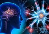 Scientists Reveal Device that Can Project Holograms Into Your Brain to Create New Experiences