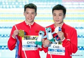 Seven gold in hands, China continues win streak in diving