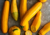 Summer Squash: The Best Ways to Pick It, Cook It, and Eat It