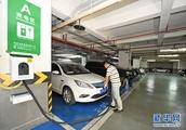 China's auto consumption gets greener