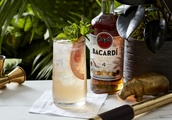 Celebrate National Rum Day With BACARDí