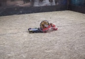 YouTube Thinks Video Of 2 Robots Fighting Is Animal Abuse