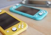 Nintendo Switch Lite Teardown Reveals Its Analog Sticks Are Same As Original Joy-Cons'
