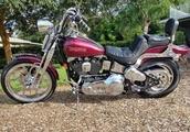 1998 Harley Davidson FXSTS Springer Softail