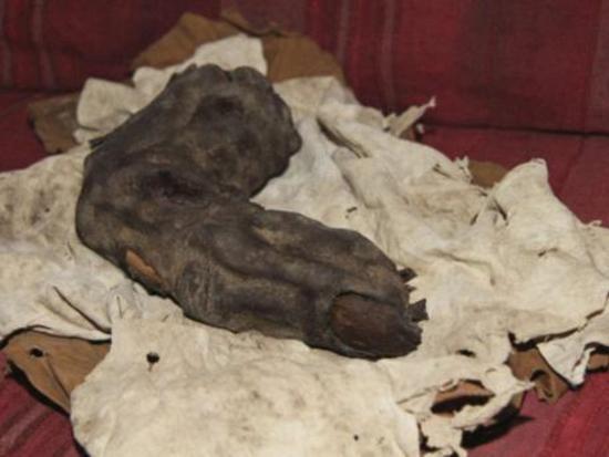 Gigantes existiram? Dedo de 38 centímetros descoberto no Egito deixa arqueólogos sem respostas!