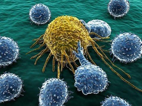 Prêmio nobel em medicina quebra o silêncio e revela: O câncer não é uma doença… Mas sim uma deficiência!