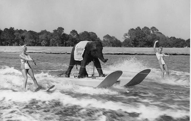 These 45 Rare Historical Photos Will Leave You Speechless. #35 Is Mind Blowing