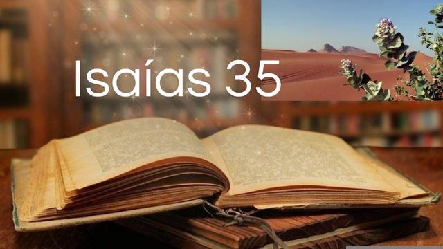 Assombro total! A profecia da Bíblia é cumprida. Vídeo surpreendente sobre o cumprimento de Isaías 35: como diz a Bíblia.