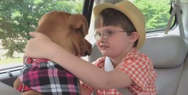 Mom Who Brings Home This Rescue Pit Bull Is Stunned At What It Does To Her Son