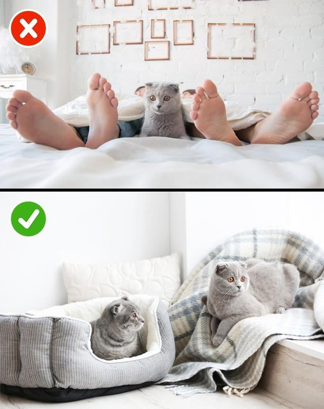 What Happy Couples Do Before They Go to Sleep!