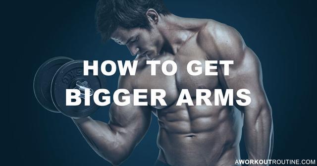 Comment obtenir de plus gros bras  La meilleure routine d ... 5580cbe0f74