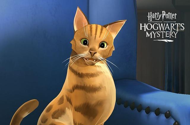 Harry Potter Hogwarts Misterio Mascotas Deberia Haber Sido Gratis