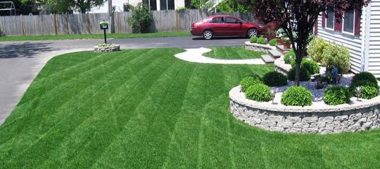 Prächtig So reparieren Sie braune Fleckenpilze und Flecken auf Ihrem Rasen #SH_21