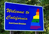 California Bureaucrats to Create NH State Laws?