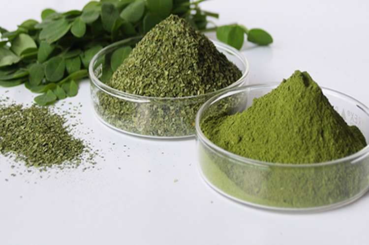 This Herb is a Natural Cancer Killer, Anti-Diabetes and Anti-Aging Miracle!