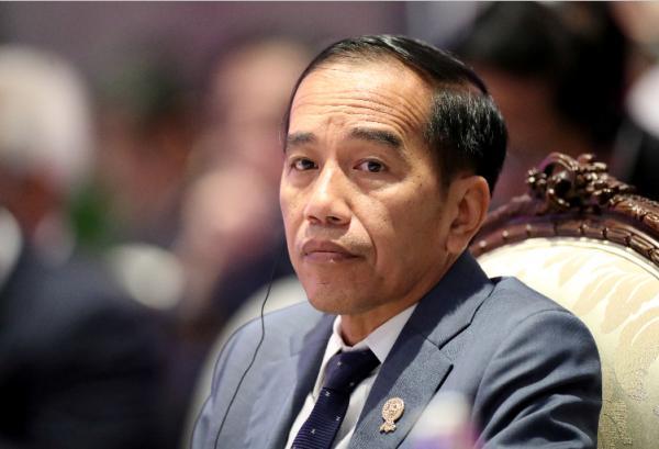 Coronavirus Secret Cure: Blend These Herbs and Drink it, Says Indonesia President Joko Widodo